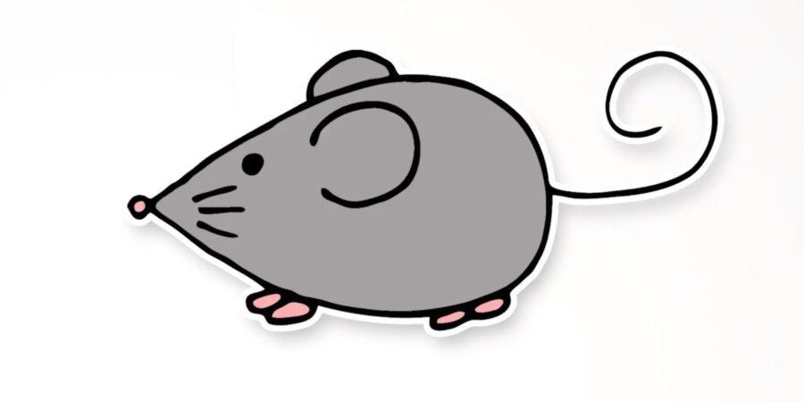 Рисунки мышки карандашом для детей (30 фото)