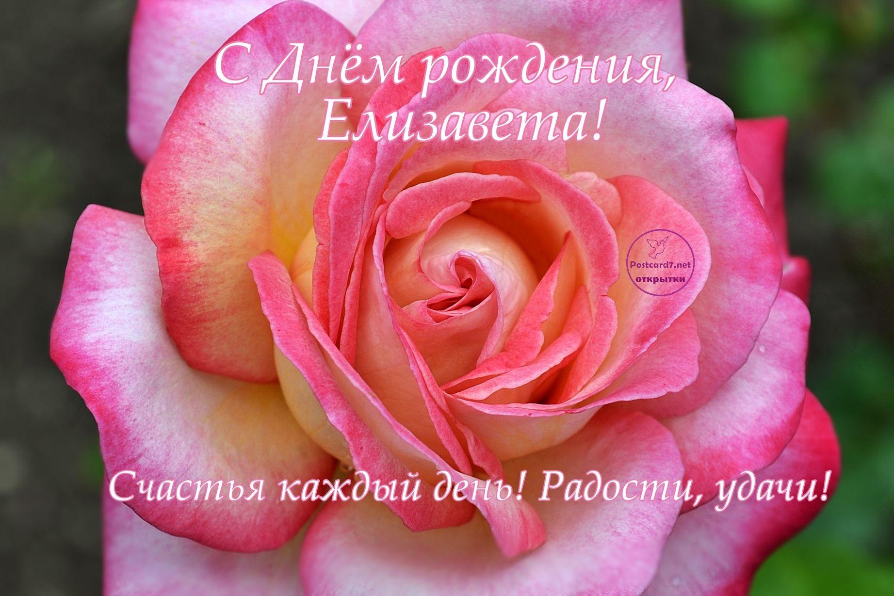 Смешные картинки поздравления С Днем Рождения Елизавета (36 фото)