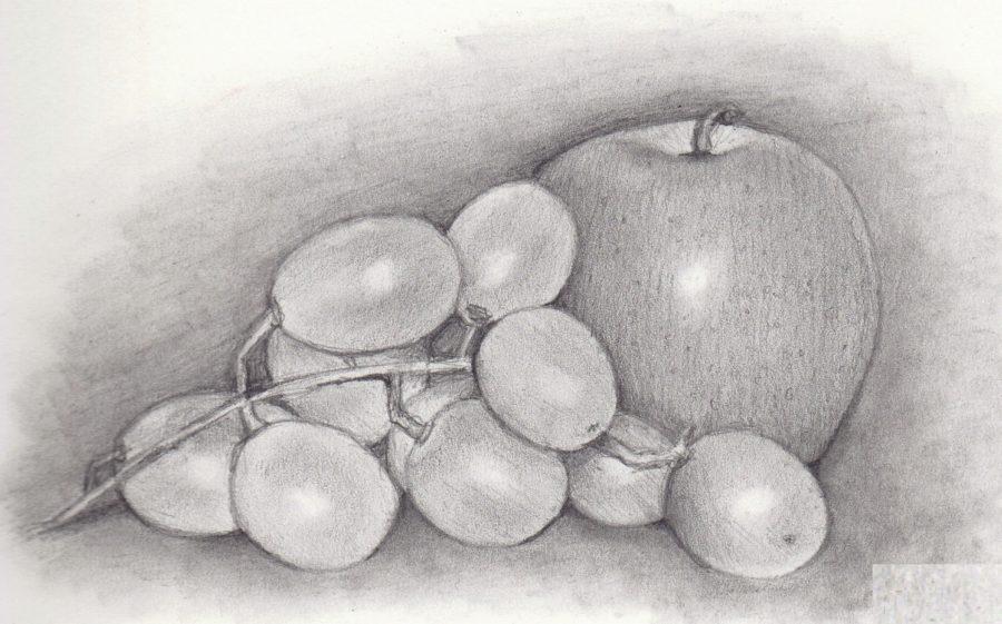 Рисунки овощи карандашом для детей (31 фото)