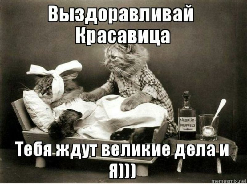 Смешные картинки «Выздоравливай!» (39 фото)
