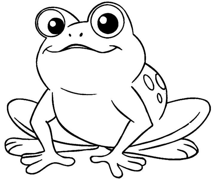Рисунки лягушки для срисовки (40 фото)