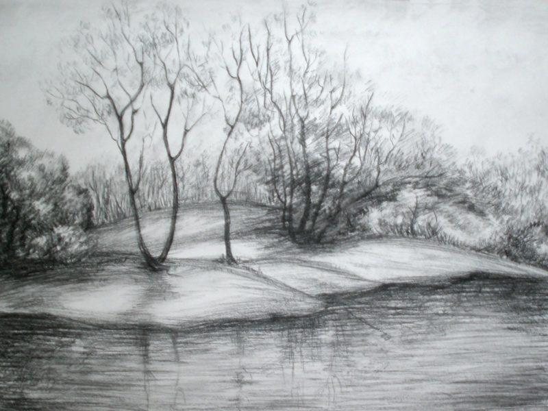 Рисунки для срисовки лес (15 фото)