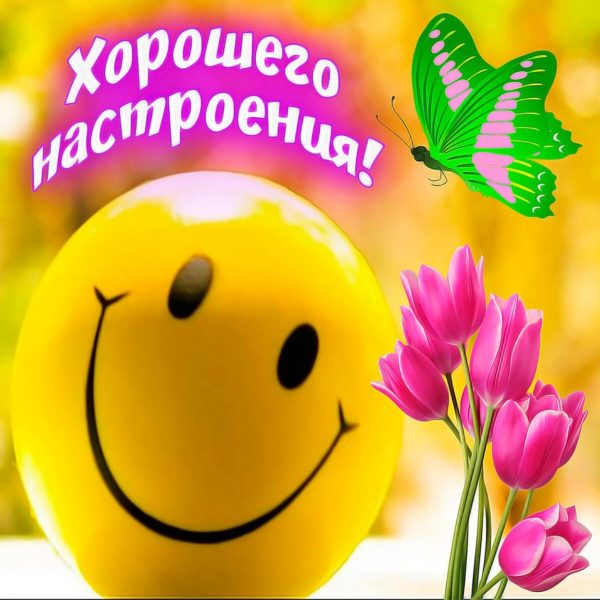 Смешные картинки «Хорошего дня!» (34 фото)