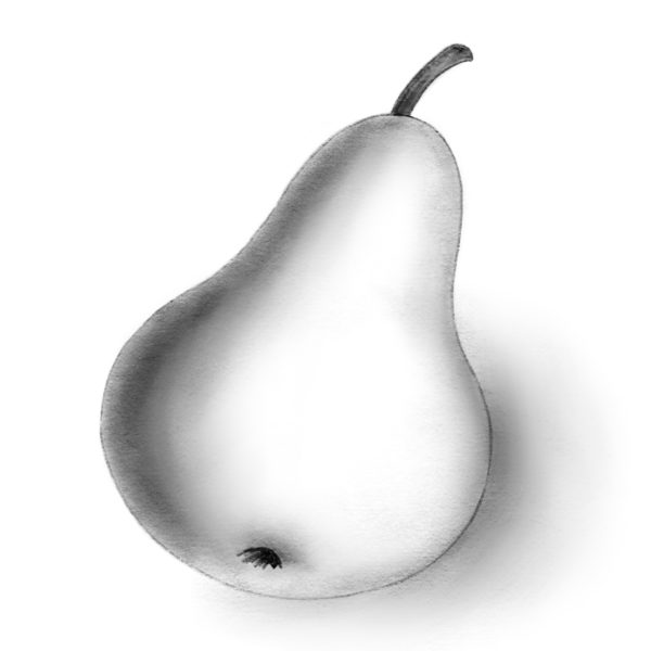 Рисунки карандашом для детей яблоки (48 фото)