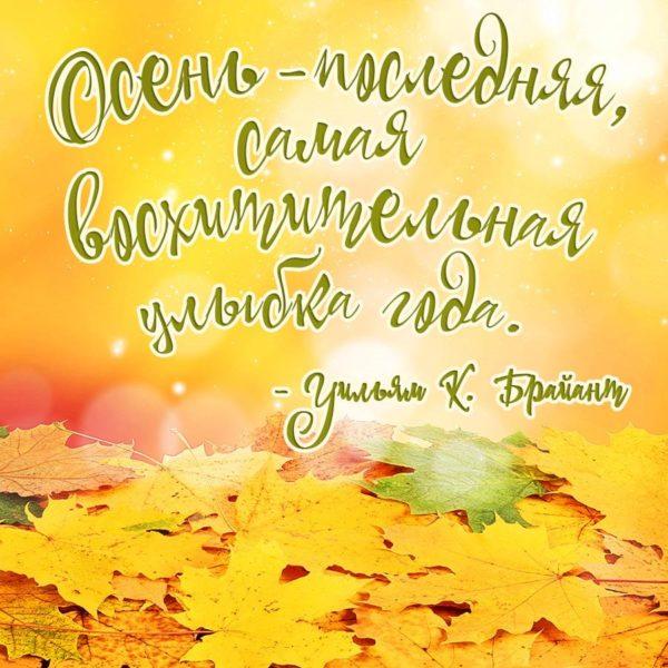 Картинки красивая осень (36 фото)