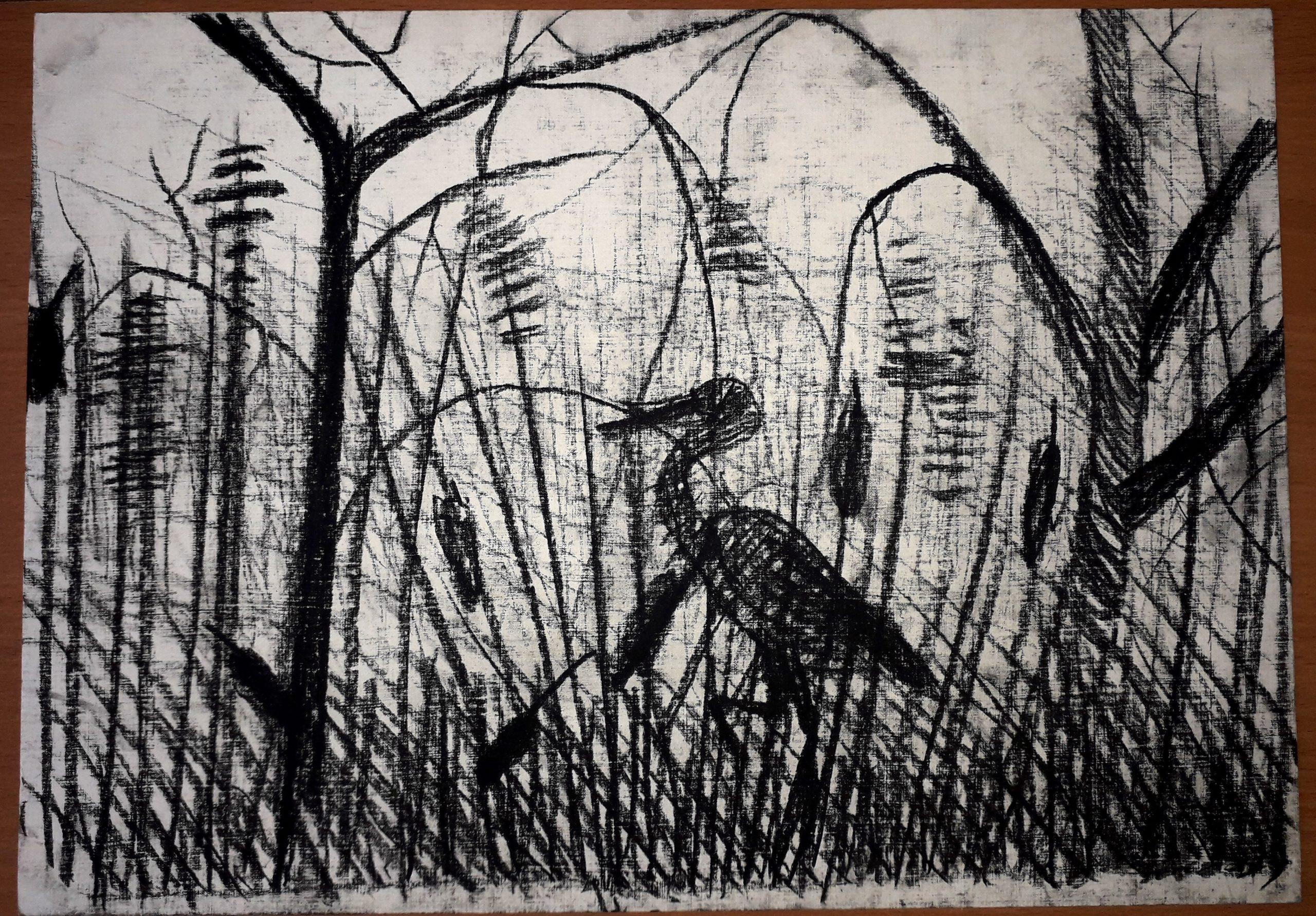 Рисунки птицы карандашом для детей (63 фото)
