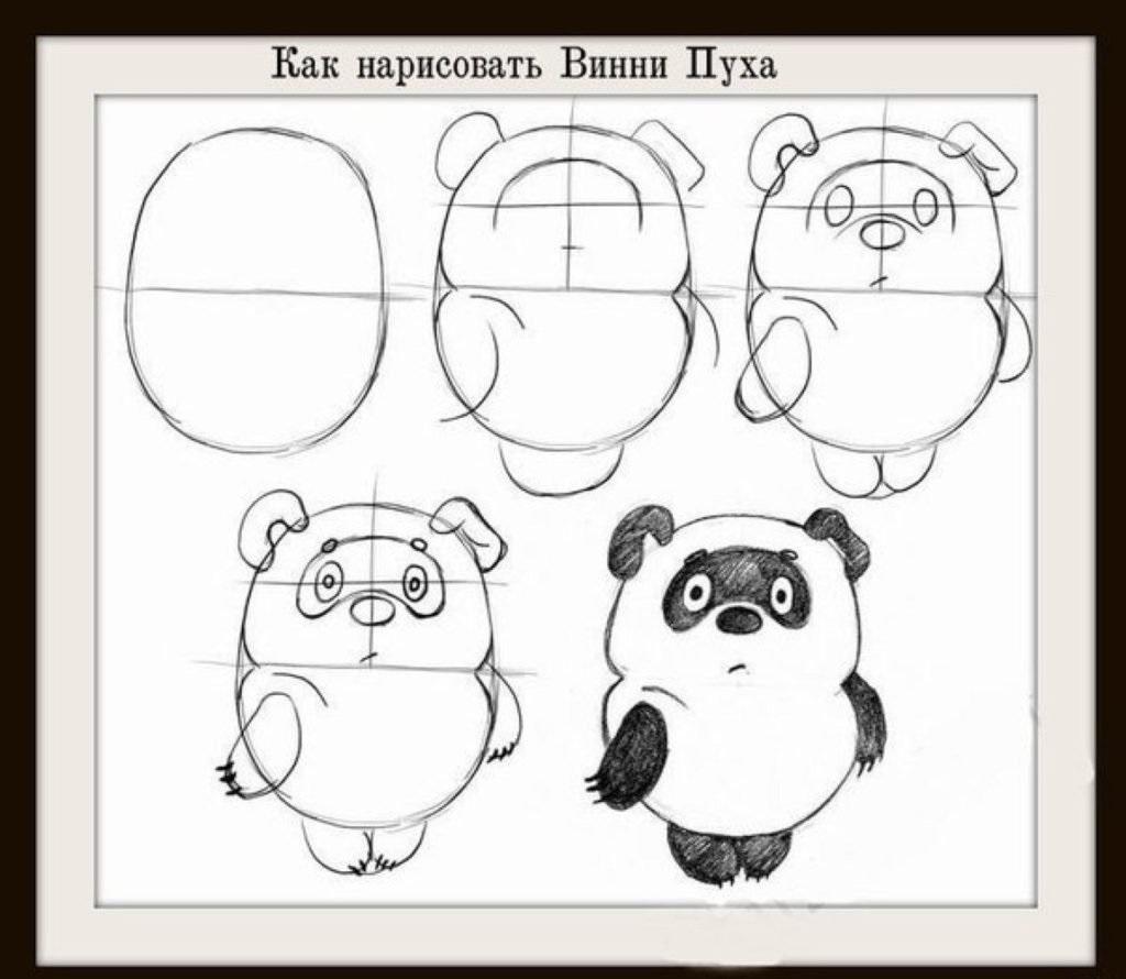 Рисунки медведя для срисовки (20 фото)
