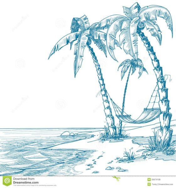 Рисунки карандашом пальма (30 фото)