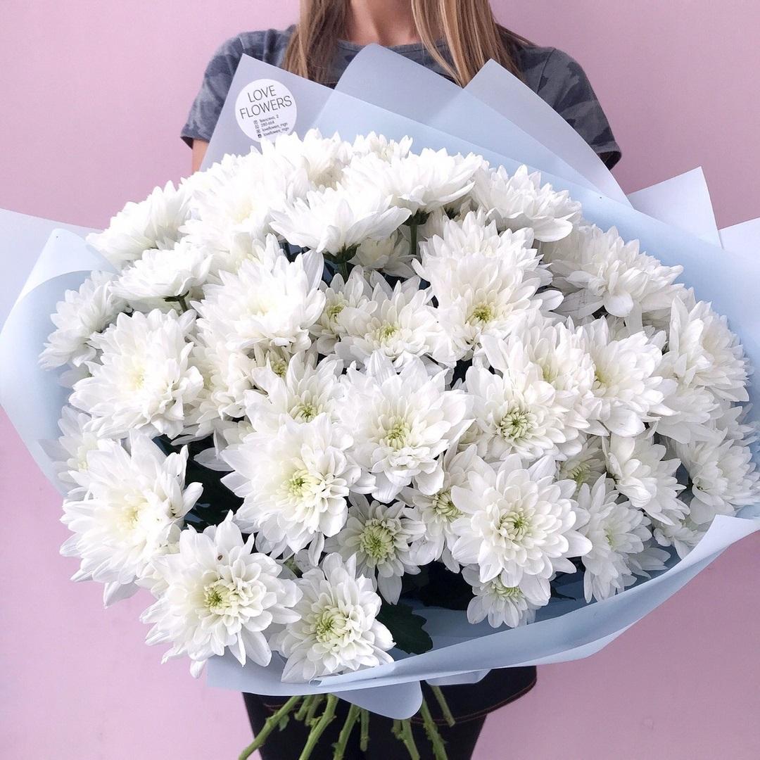Фото букеты из хризантем (55 фото)
