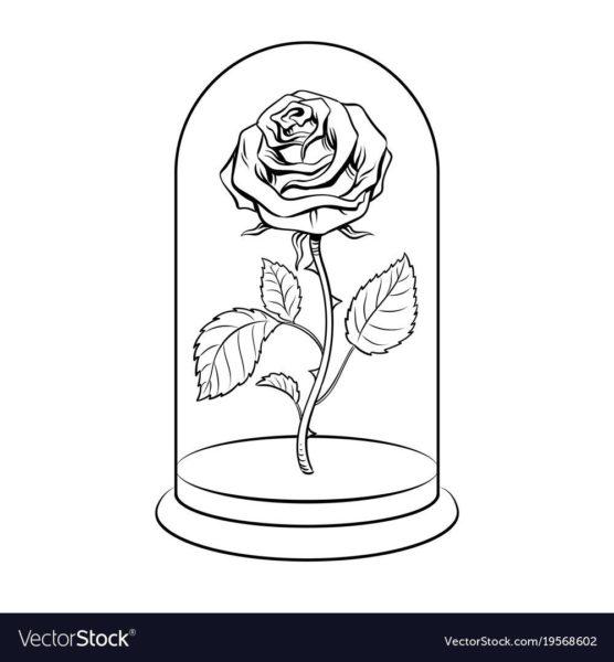 Рисуноки розы для срисовки (35 фото)