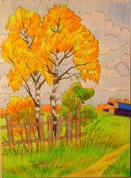 Рисунки леса карандашом для детей (34 фото)