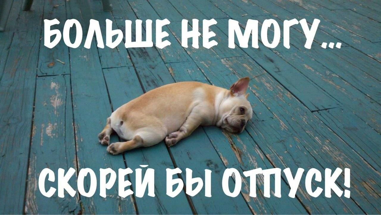 Смешные картинки про понедельник (35 фото)