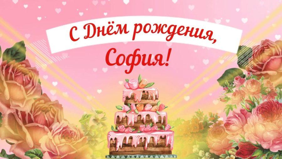 Смешные картинки поздравления С Днем Рождения София (25 фото)