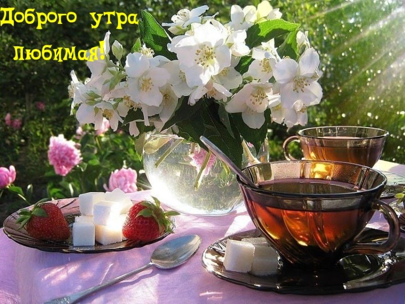 Красивые картинки Доброе утро, любимая! (38 фото)